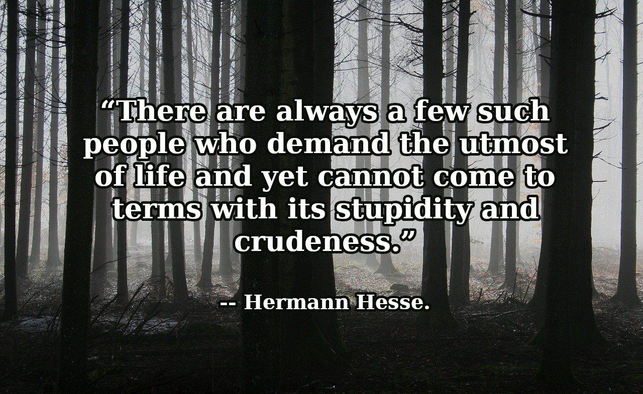 """There are always a few such people who demand the utmost of life and yet cannot come to terms with its stupidity and crudeness."" — Hermann Hesse. [1280×785]"