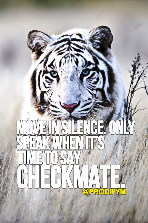 [image]Move in silence. Only speak when it's time to say checkmate.