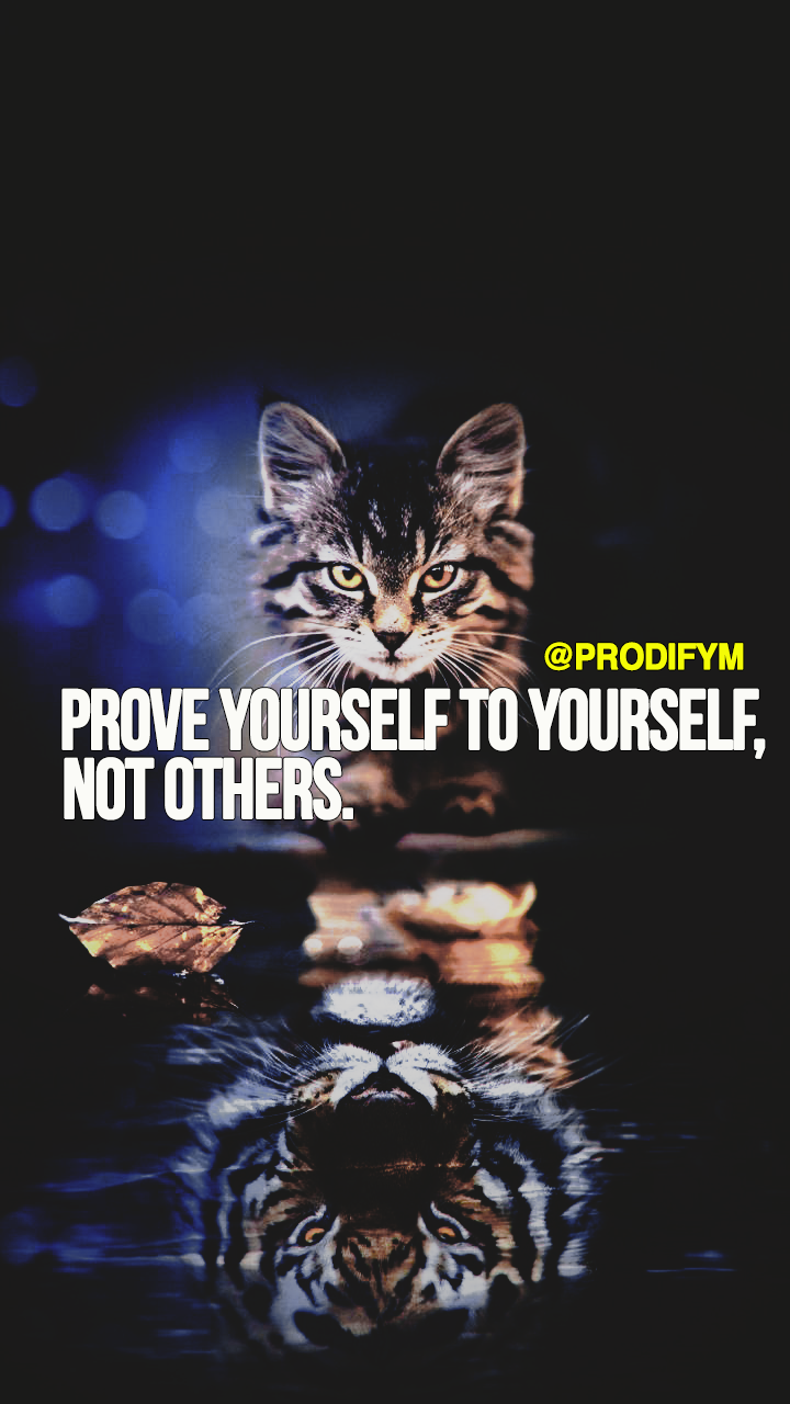 [image]Prove yourself to yourself, not others.