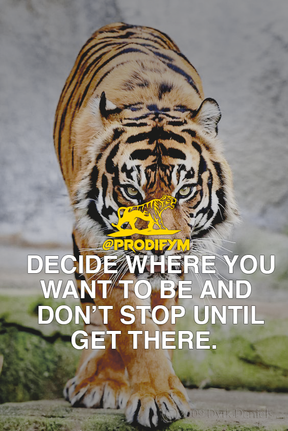 "[IMAGE] ""Decide where you want to be and don't stop until you get there."""