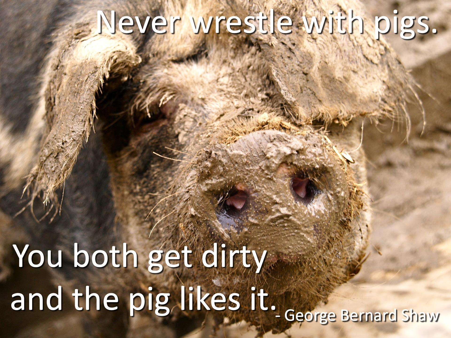 Never wrestle with pigs. George Bernard Shaw. (1920×1440)