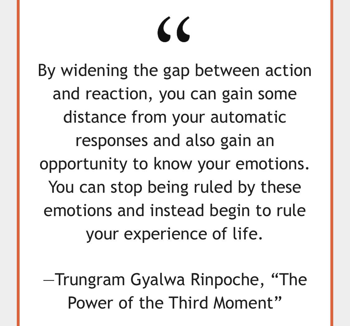 [Image] By widening the gap between action and reaction, you can gain some distance from your automatic responses and also gain an opportunity to know your emotions…-Trungram Gyalwa Rinpoche