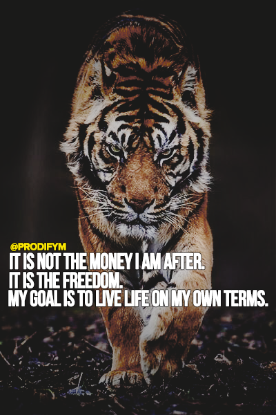 [image]It is not the money I am after. It is the freedom. My goal is to live life on my own terms.