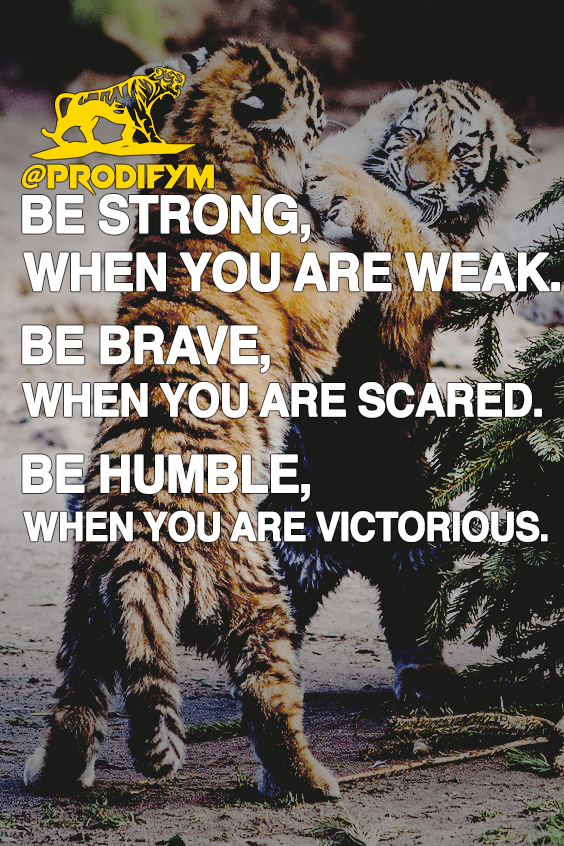 "[image] ""Be strong, when you are weak."" ""Be brave, when you are scared."" ""Be humble, when you are victorious. """