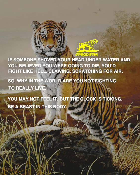 "[image] ""If someone shoved your head under water and you believed you were going to die, you'd fight like hell. Clawing, scratching for air. So, why in the world are you not fighting everyday to really live. You may not feel it, but the clock is ticking. Be a beast in this body."""