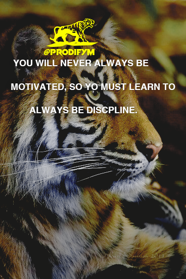"[image] ""You will never always be motivated, so you must learn to always be discipline."""