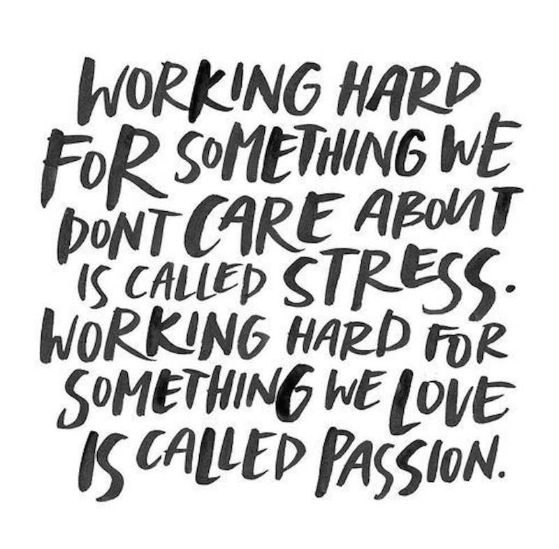 [IMAGE] Are you pursuing your passion?