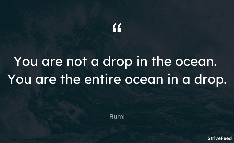 """You are not a drop in the ocean. You are the entire ocean in a drop."" – Rumi [900X550]"