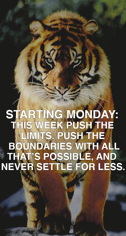 "[image] Starting Monday: ""This week push the limits. Push the boundaries with all that's possible and never settle for less."""