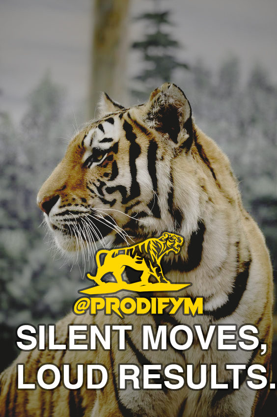 "[image] ""Silent moves, loud results."""