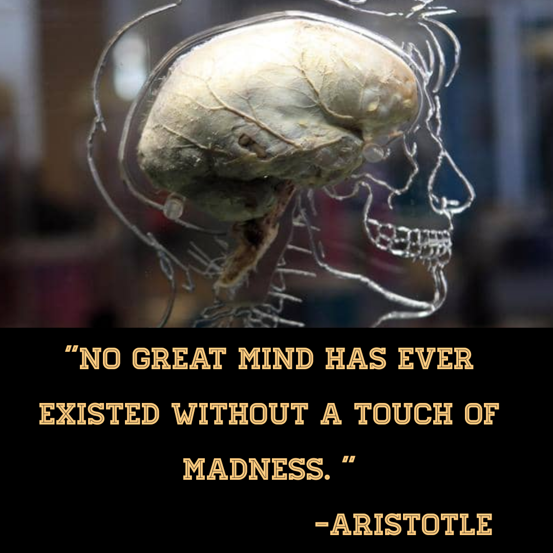"[1080*1080]""No great mind has ever existed without a touch of madness."" -Aristotle"