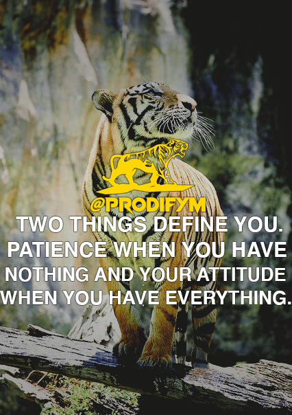 "[IMAGE] ""Two things define you. Your patience when you have nothing and your attitude when you have everything."""