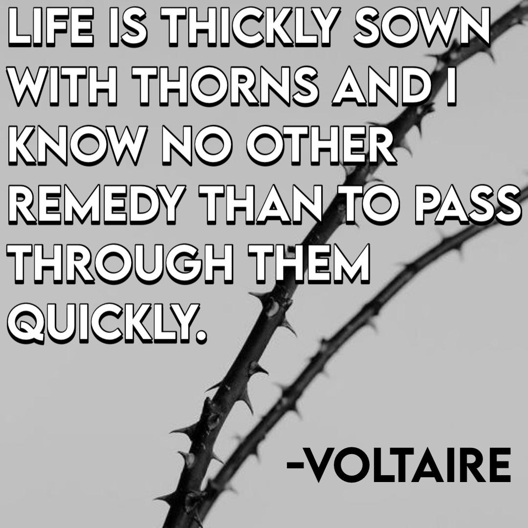 """Life is thickly sown with thorns and I know no other remedy than to pass through them quickly."" ~Voltaire [500 x 500]"