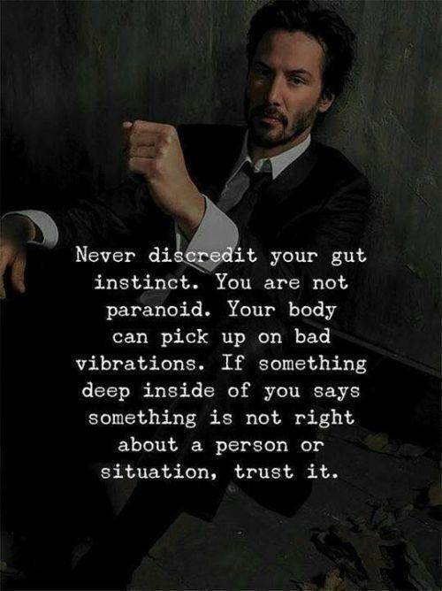 [Image] Trust the gut