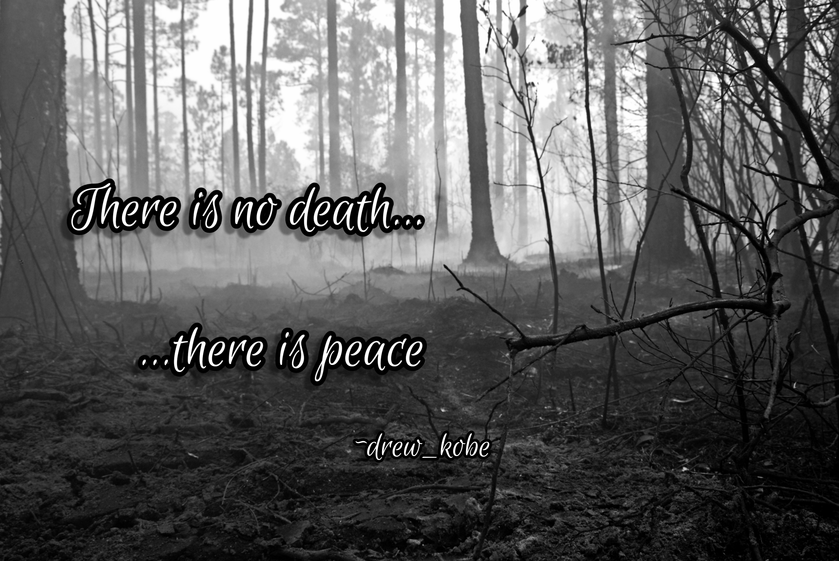 There is no death… ~ drew_kobe (2868×1920)