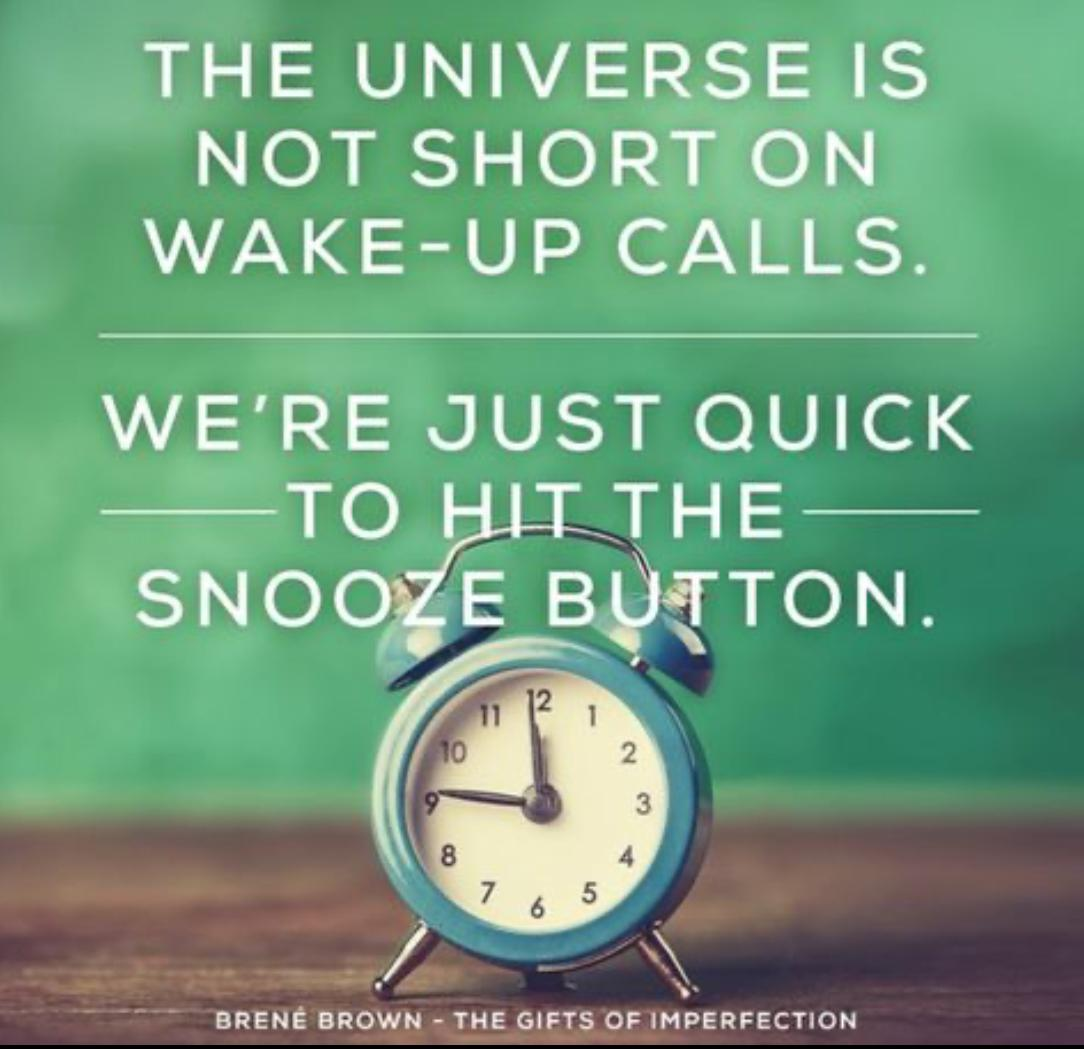 THE UNIVERSE IS NOT SHORT ON WAKE-UP CALLS…BRENE BROWN (1084×1049)