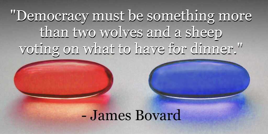 """Democracy must be something more than … – James Bovard [1024×514]"