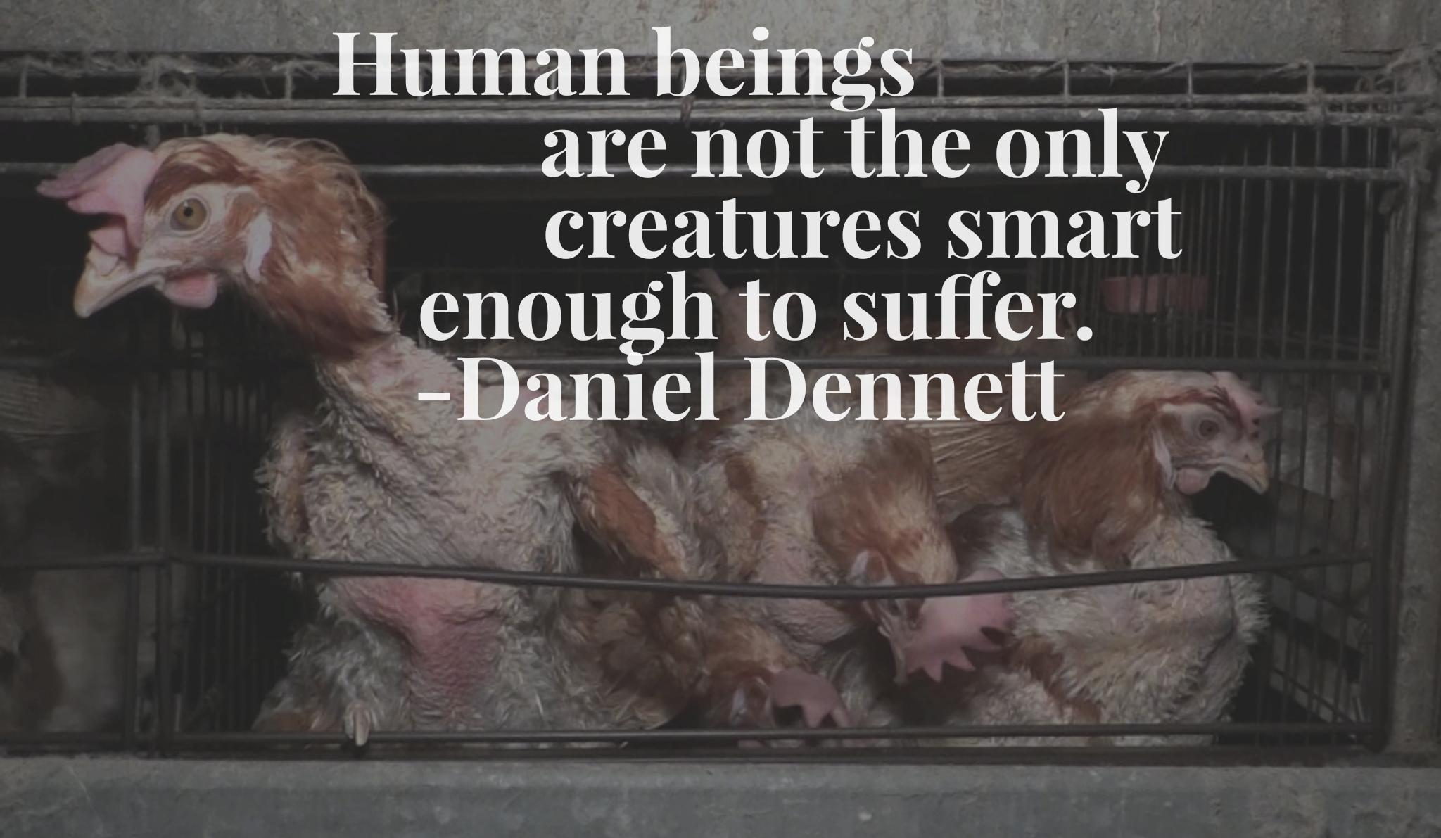 """Human beings are not the only creatures smart enough to suffer."" -Daniel Dennett [2048×1191][OC]"