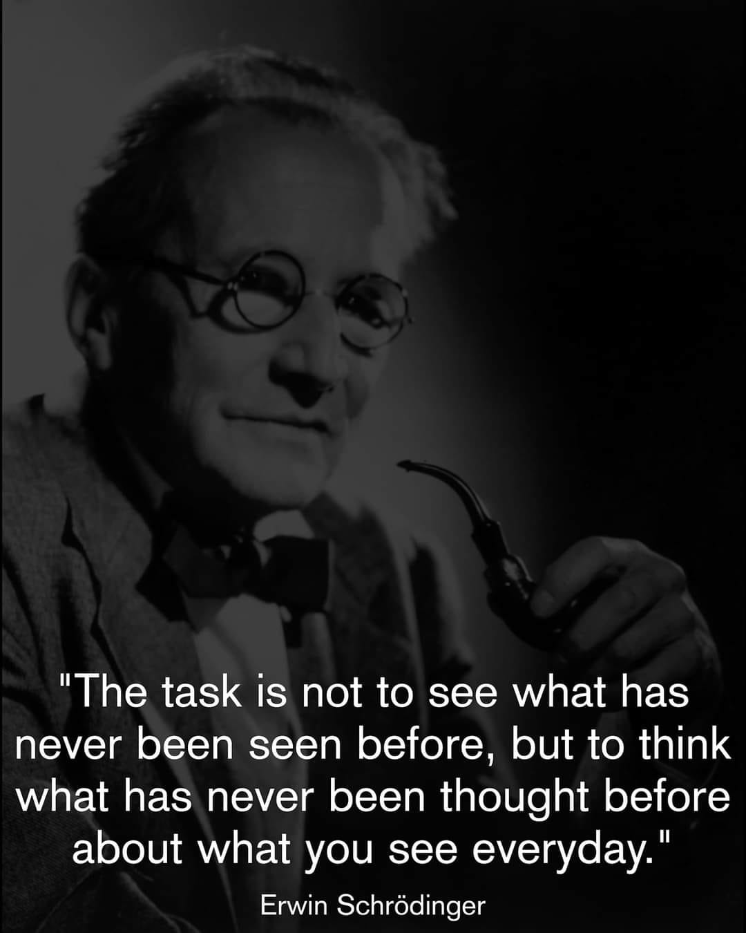 """The task is not to see what has never been seen before, but to think what has never been thought before about what you see everyday."" – Erwin Schrodinger [1080 × 1350]"