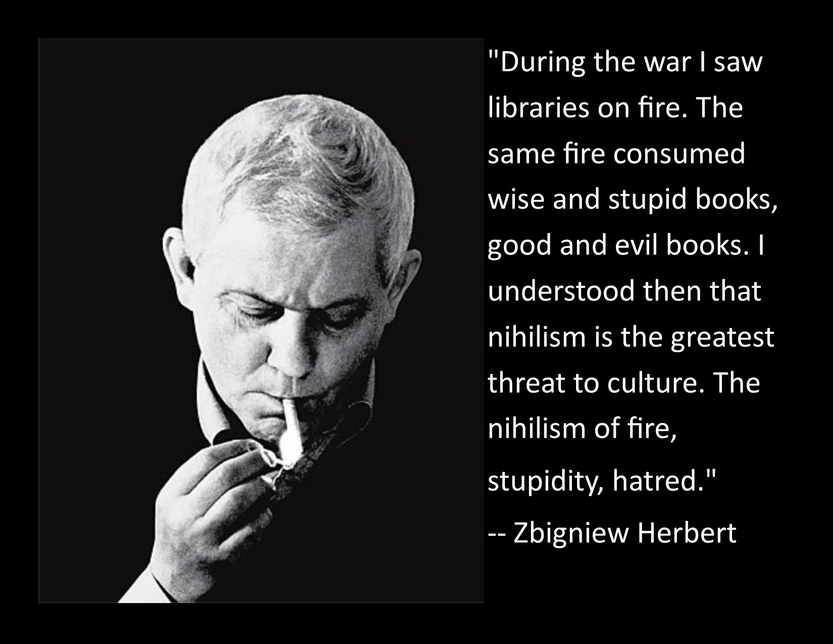 """During the war I saw libraries on fire…"" ~Zbigniew Herbert [1650×1275] [OC]"
