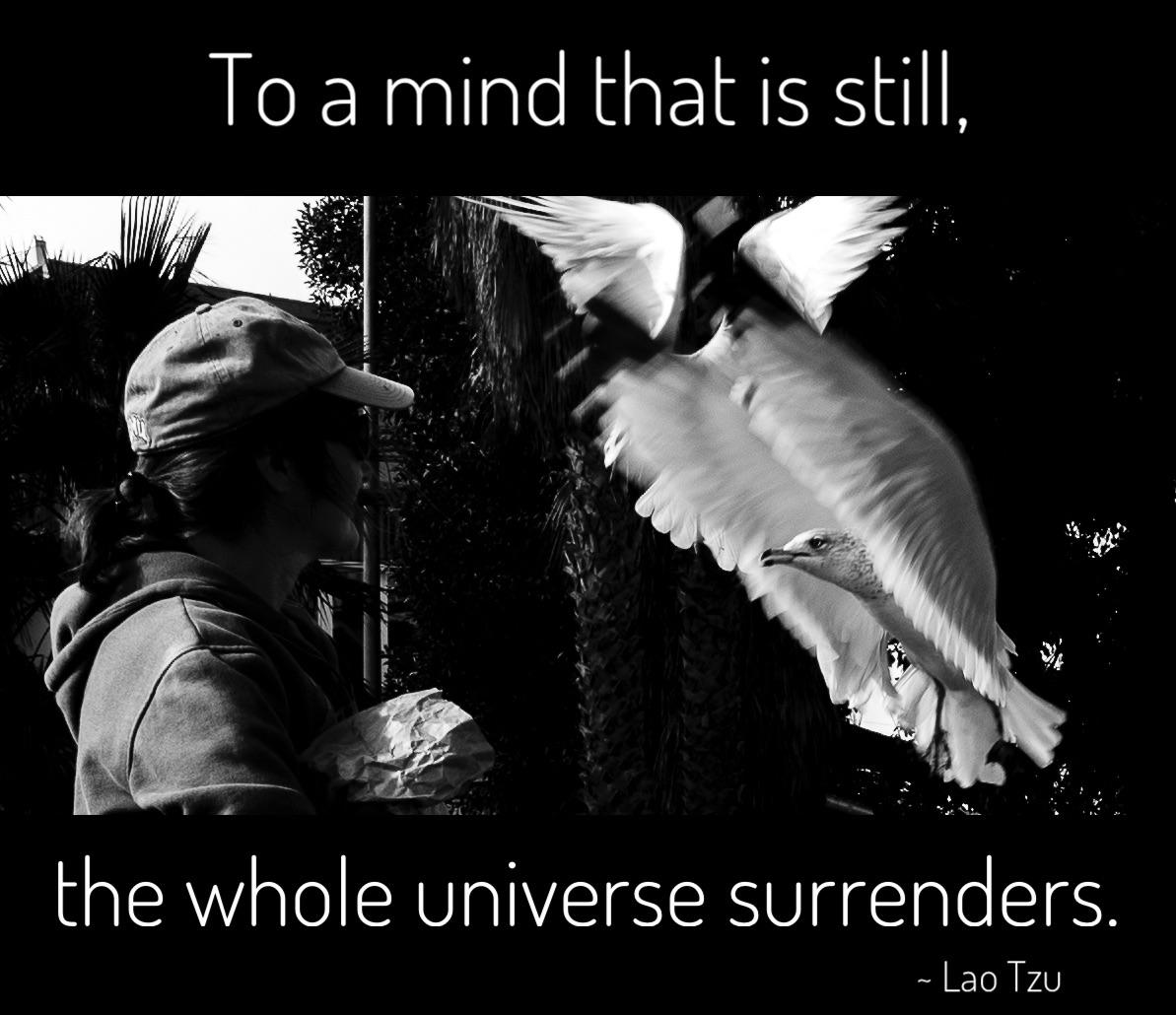 To a mind that is still, the whole universe surrenders. ~ Lao Tzu [1193×1030] [OC]