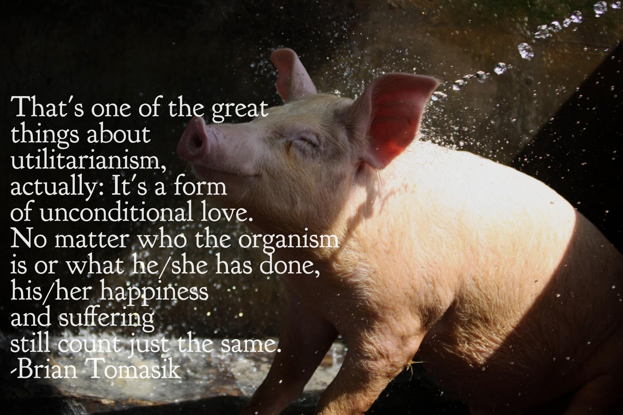 """That's one of the great things about utilitarianism, actually: It's a form of unconditional love. No matter who the organism is or what he/she has done, his/her happiness and suffering still count just the same."" -Brian Tomasik [2048×1365][OC]"