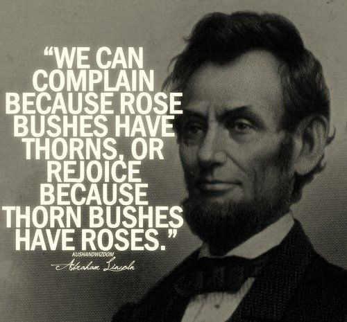 We can complain because rose bushes have thorns, or rejoice because thorn bushes have roses. – Abraham Lincoln [500X465]