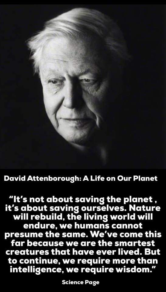"""It's not about saving the planet, it's about saving ourselves.Nature will rebuild,the living world will presume the same.We've come to this for because we are the smartest creatures that has ever lived.But to continue, we require more than intelligence,we require. wisdom.""546×960"