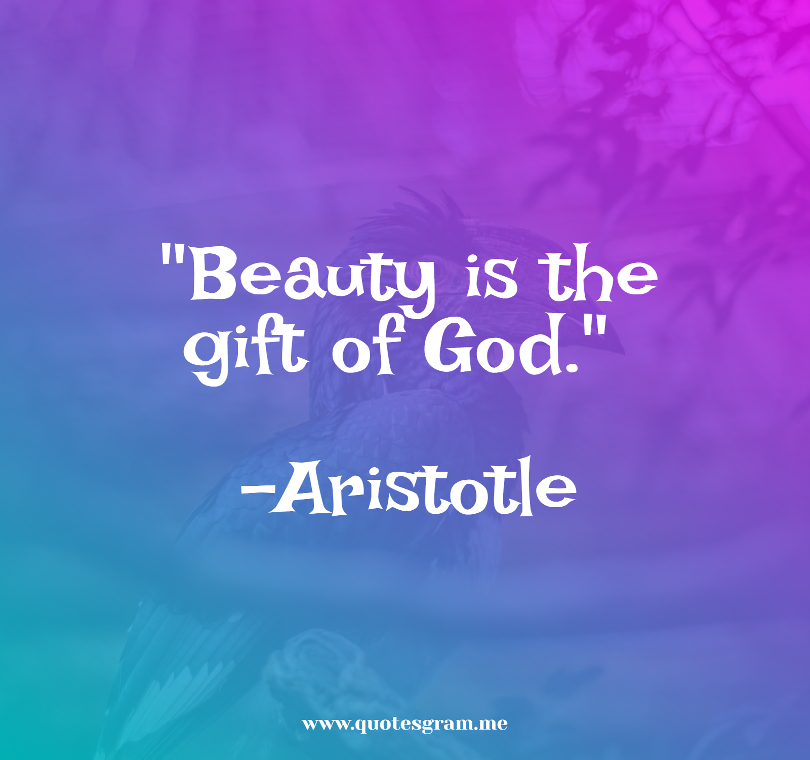 """Beauty is the gift of God."" -Aristotle [1600×1500]"