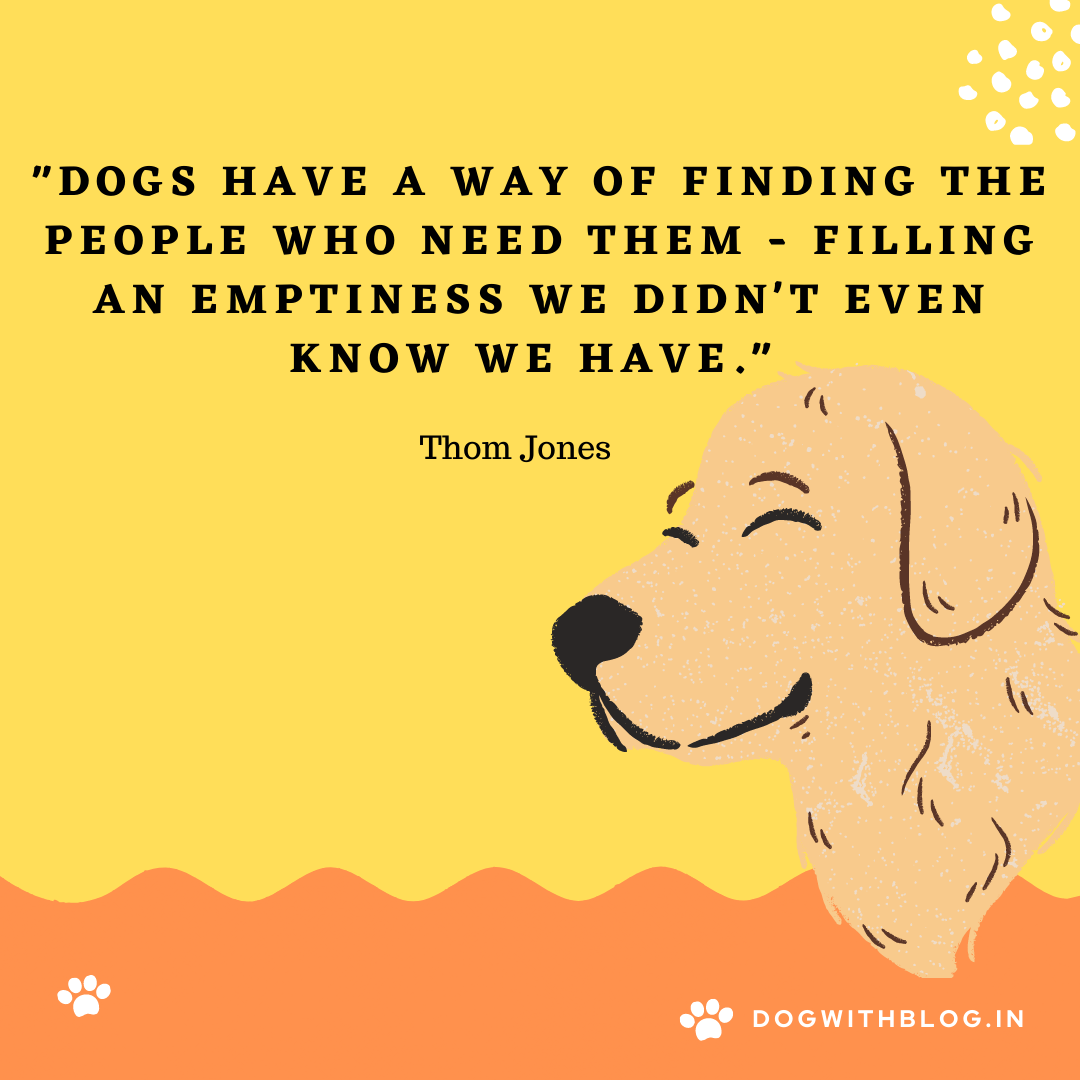 """Dogs have a way of finding the people who need them – filling an emptiness we didn't even know we have."" ~Thom Jones [1080*1080]"