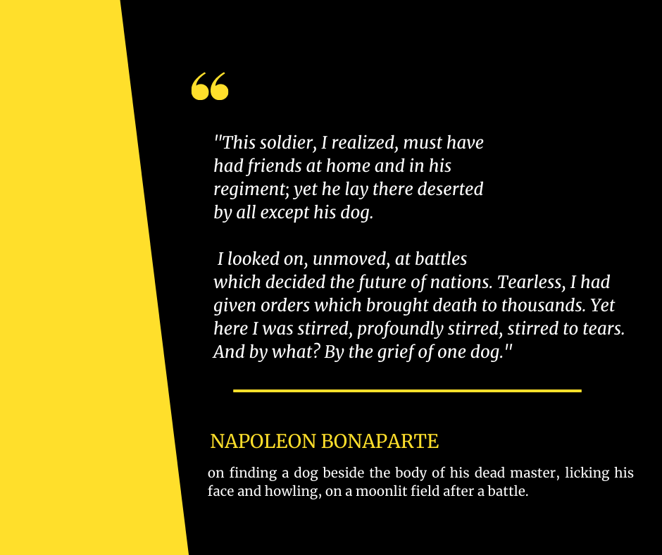 """THis soldier, I realized, must have had friends at home and in his regiment; yet he lay there deserted by all except his dog…"" – Napoleon Bonaparte [940*788]"