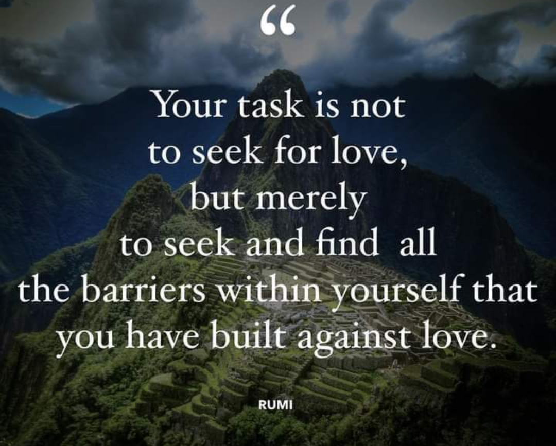 Your Task is not to seek for love, but merely to seek and find all the barriers within yourself that you've built against love. Rumi [1080×867]