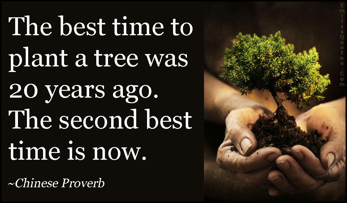[IMAGE] The best time to plant a tree was twenty years ago. The second best time is now.