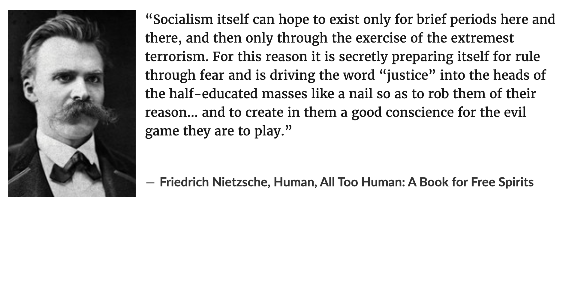 """Socialism itself can hope to exist only for brief periods here and there, and then only through the exercise of the extremest terrorism. For this reason it is secretly preparing itself for rule through fear and is driving the word ""justice""…"" -Friedrich Nietzsche [1896×971]"