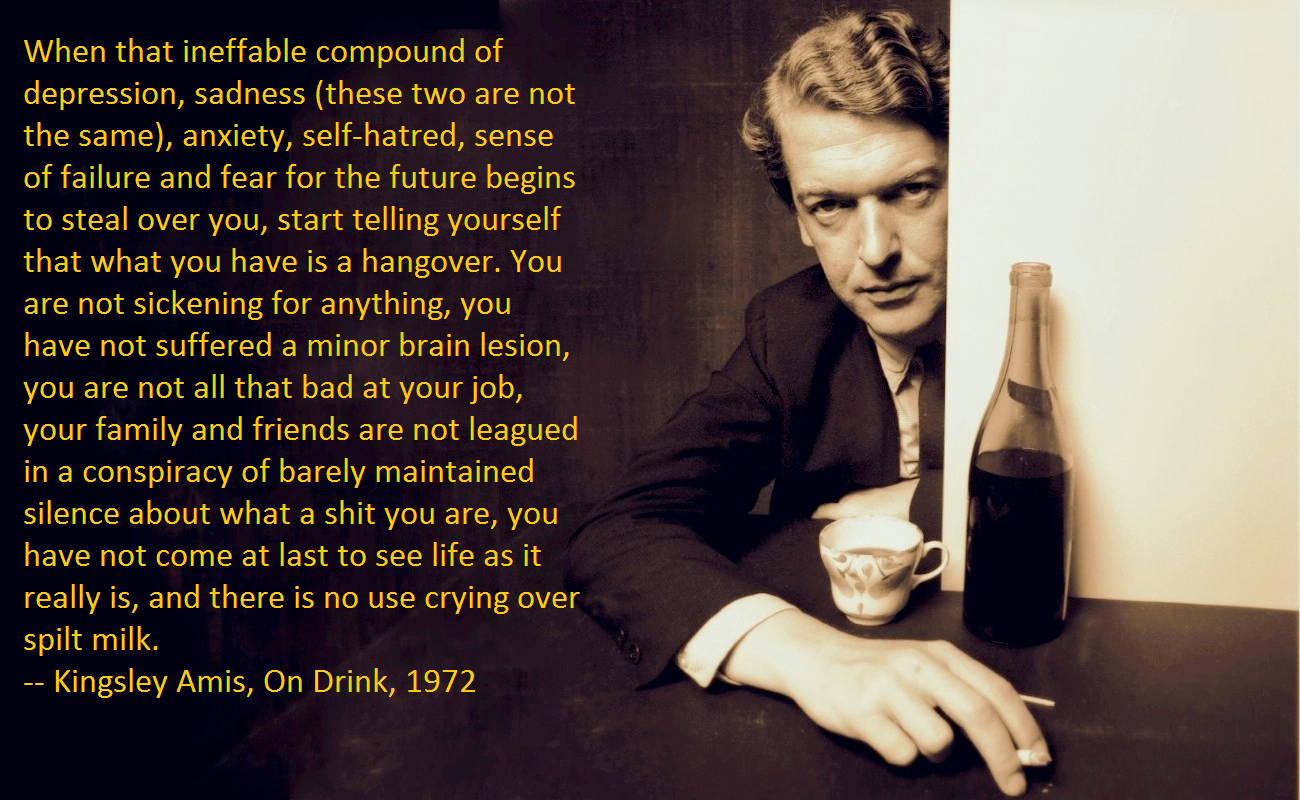 """When that ineffable compound of depression, sadness (these two are not the same), anxiety, self-hatred, sense of failure and fear for the future begins to steal over you, start telling yourself that what you have is a hangover."" ~Kingsley Amis [OC] [1300 x 800]"