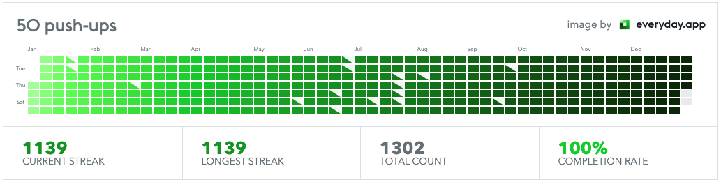 [Image] It's been 1400 days since i started doing push-ups. I have done pushups for 1139 days in a row and a total of 50778 push-ups!