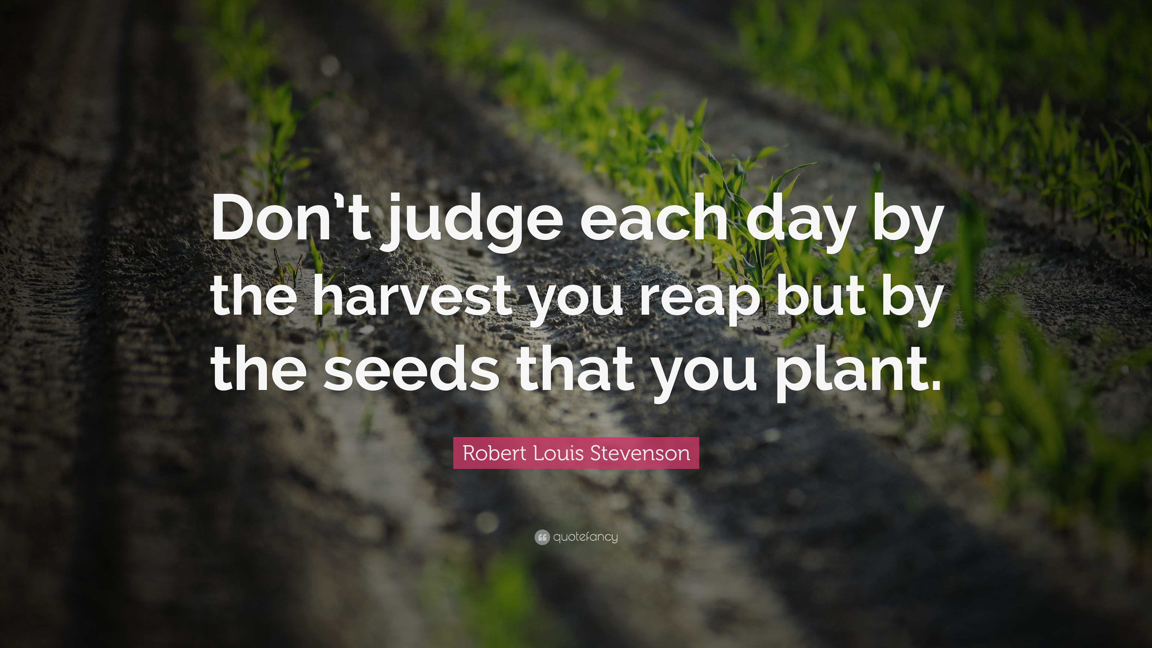 Don't judge each day by the harvest you reap but by the seeds that you plant. – Robert Louis Stevenson [3840X2160]