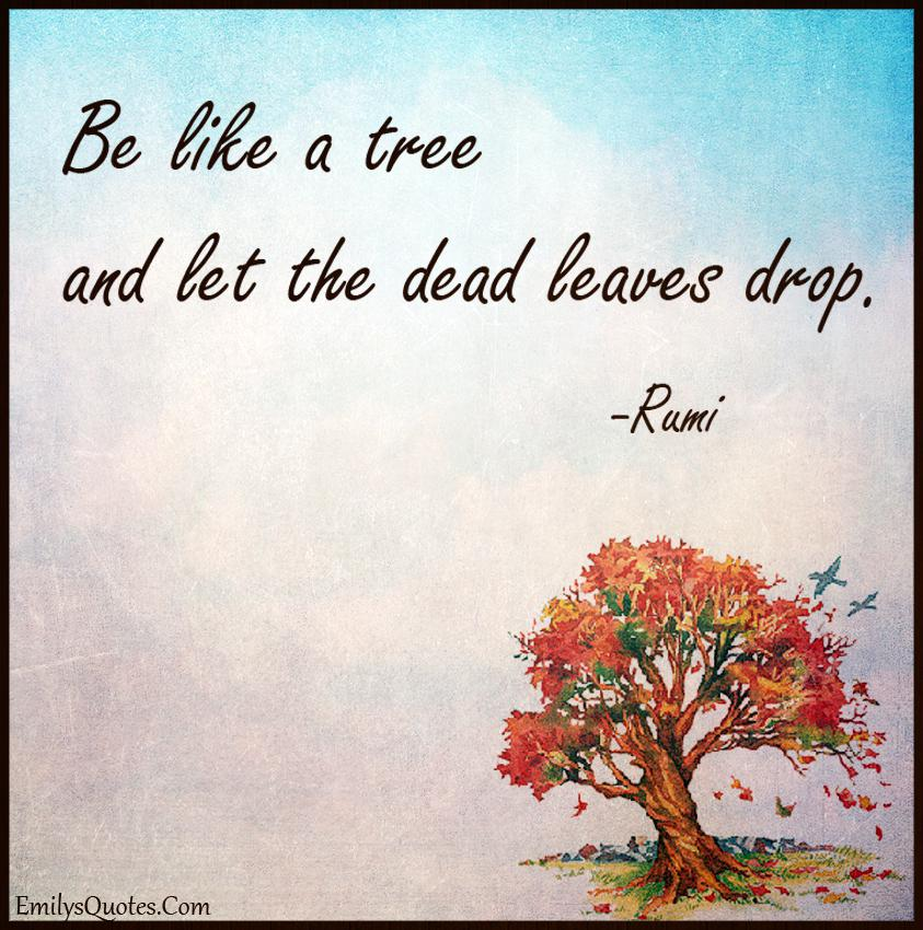 """Be Like a tree and let the dead leaves drop."" – Rumi [850X850]"