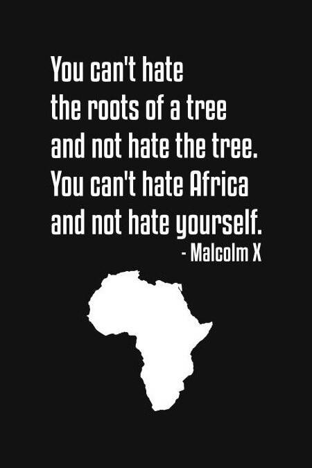 """You can't hate the roots of a tree and not hate the tree. You can't hate Africa and not hate yourself"" – Malcolm X [450 x 675]"