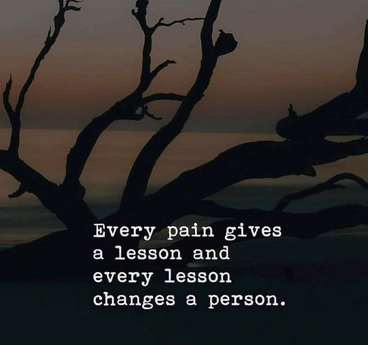 [Image] Every pain gives a lesson and every lesson changes a person.