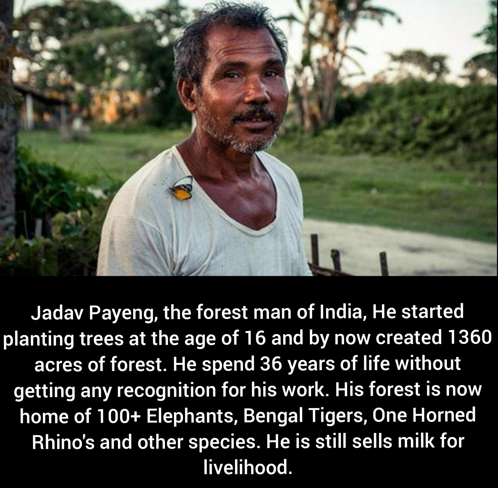 [Image] Anything is possible, even planting a forest alone. A true unsung hero.