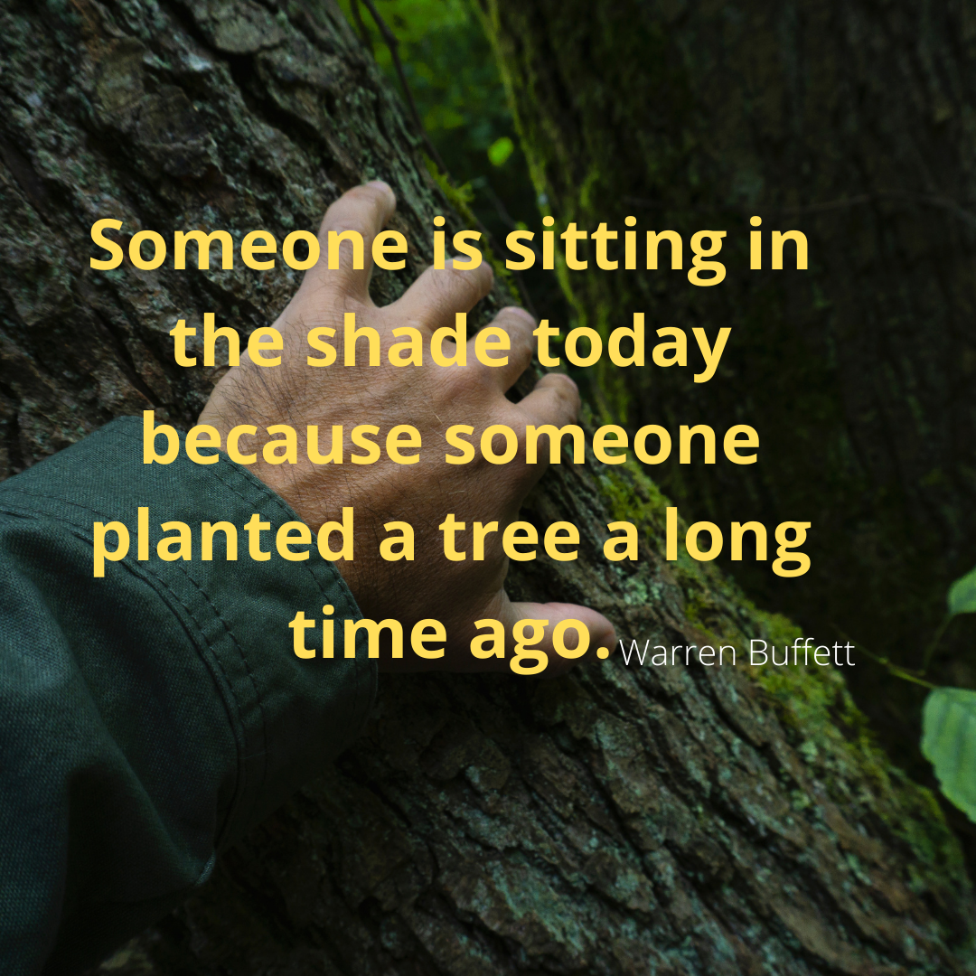 Someone is sitting in the shade today because someone planted a tree a long time ago.-Warren Buffet [1080*1080]