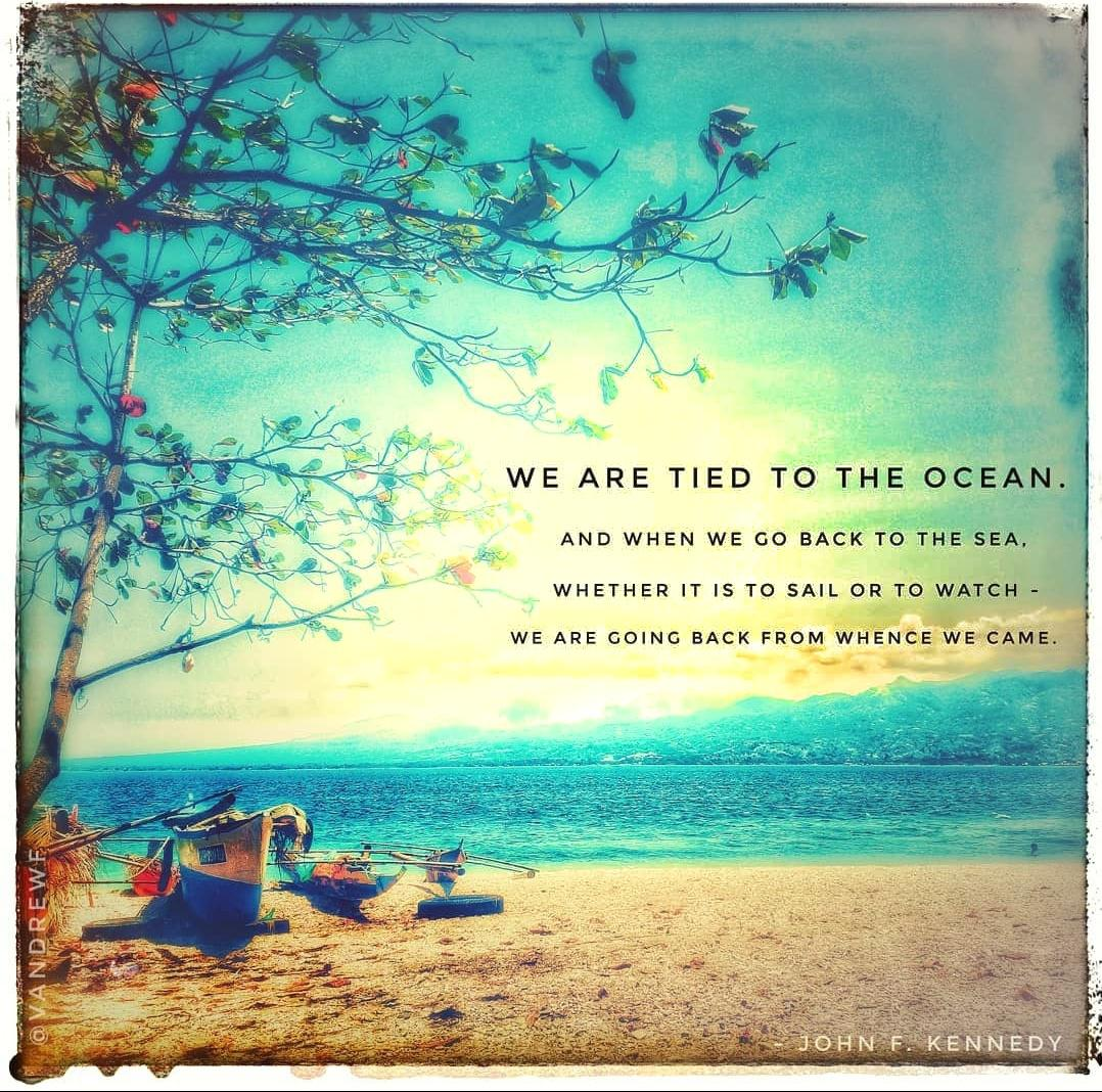"""We are tied to the ocean. And when we go back to the sea, whether it is to sail or to watch – we are going back from whence we came."" -John F. Kennedy [1078×1068]"