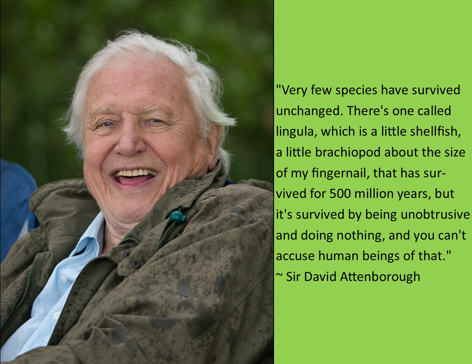 """Very few species have survived unchanged…"" ~ Sir David Attenborough [OC] [1650 x 1275]"