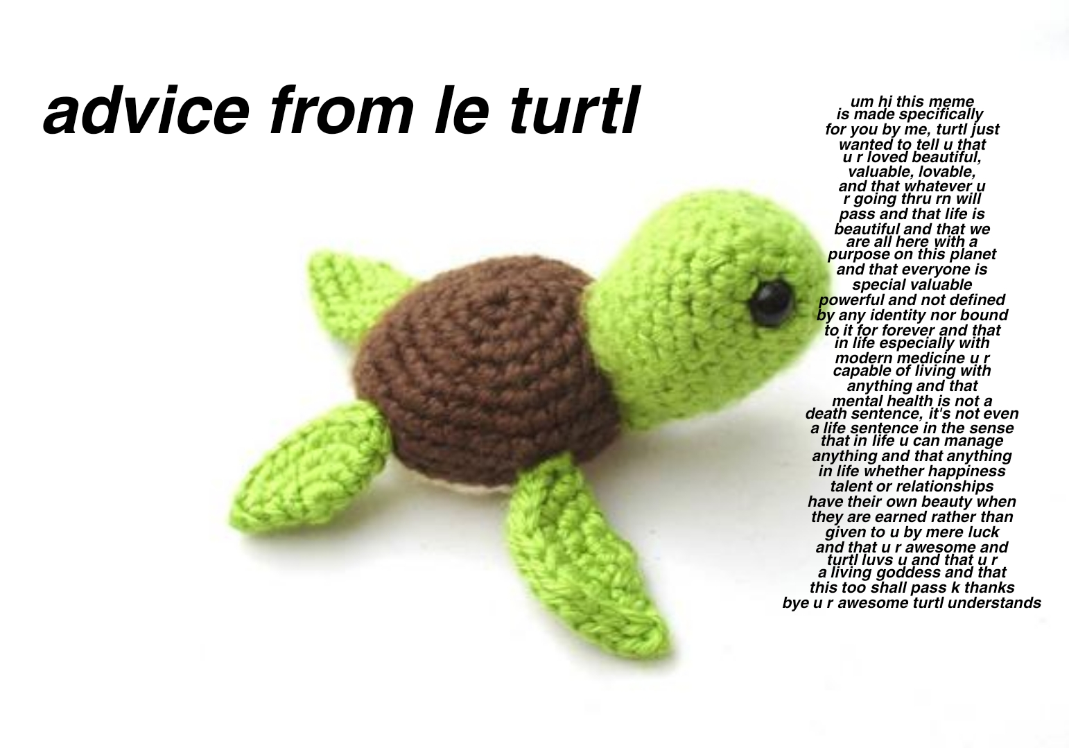 [Image] Advice From The Mental Health Turtle