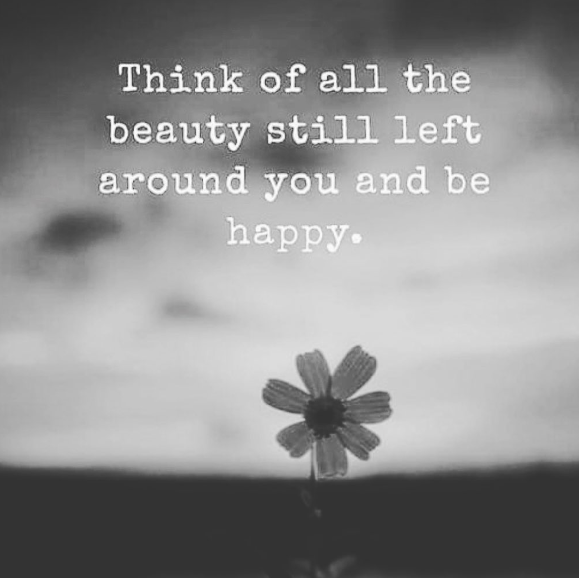 [Image] Think of all the beauty still left around you and be happy.
