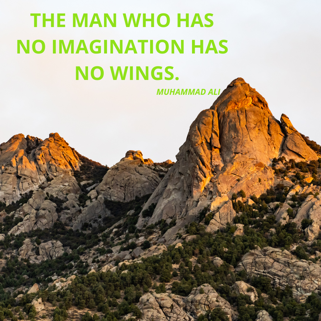 """THE MAN WHO HAS NO IMAGINATION HAS NO WINGS""-Muhammad Ali.[1080*1080]"