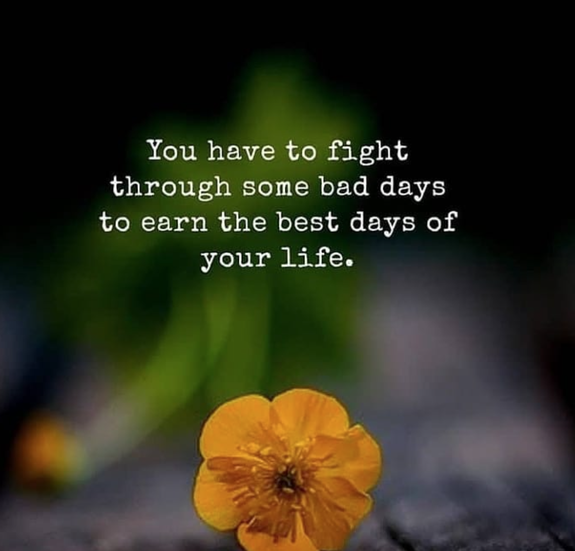 [Image] You have to fight through some bad days to earn the best days of your life.