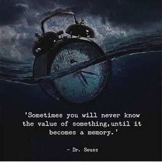 """Sometimes, you will never know the value of something, until it becomes a memory."" – Dr. Seuss [850×1050]"