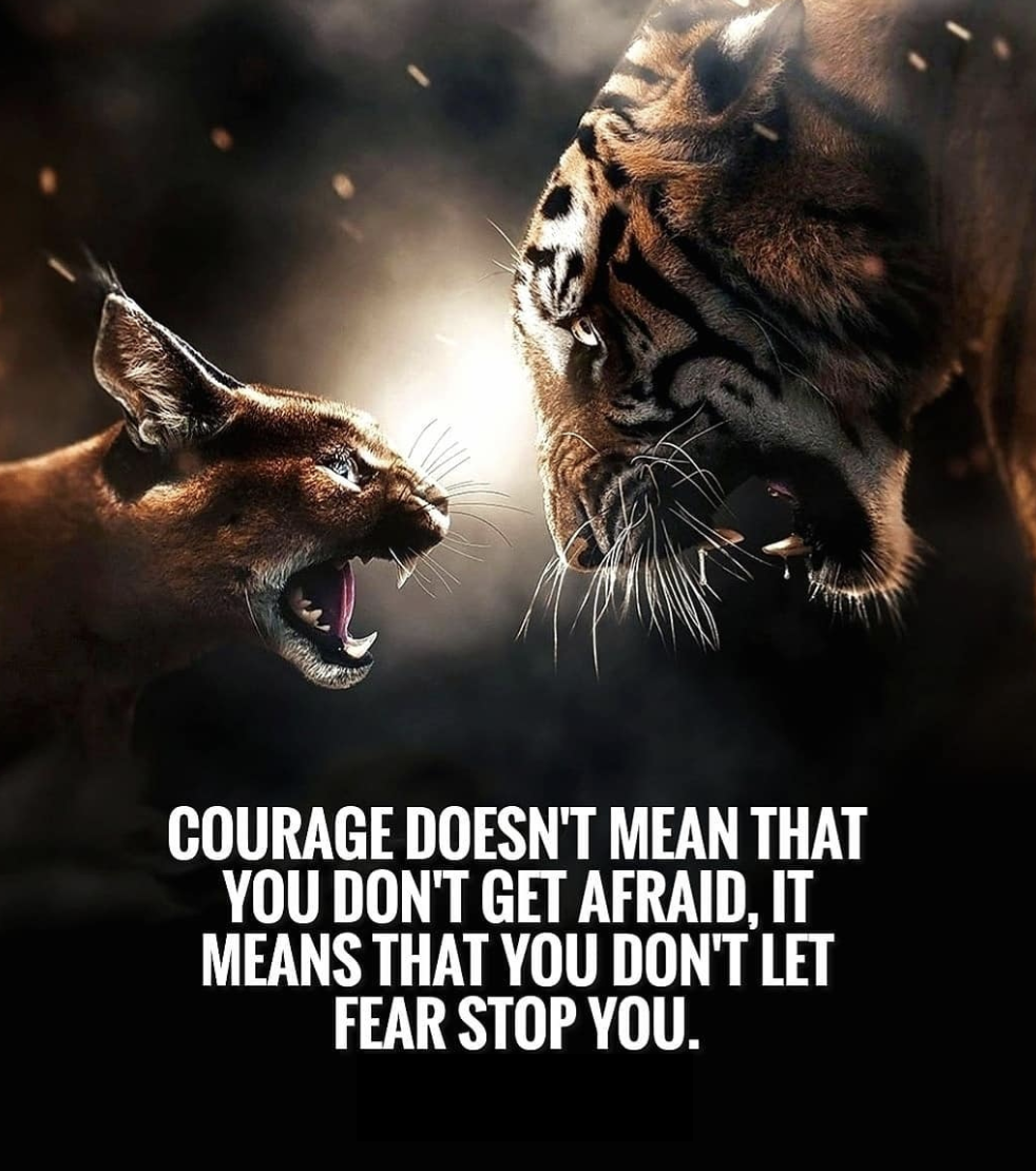 [Image] Courage doesn't mean that you don't get afraid. It means that you don't let fear stop you.